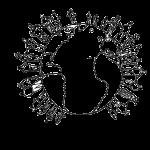 association francophone avignon